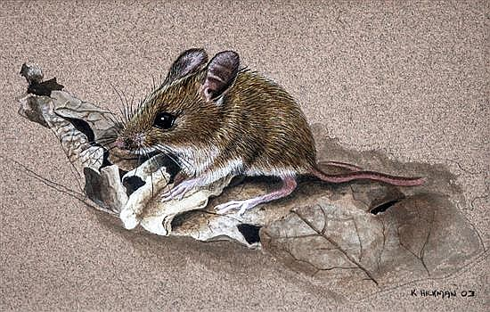 Kevin Hickman (Guernsey, b.1957) A study of a Woodmouse on an autumn leaf