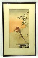 Japanese Pheasant Print