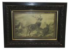 Etching of Stags