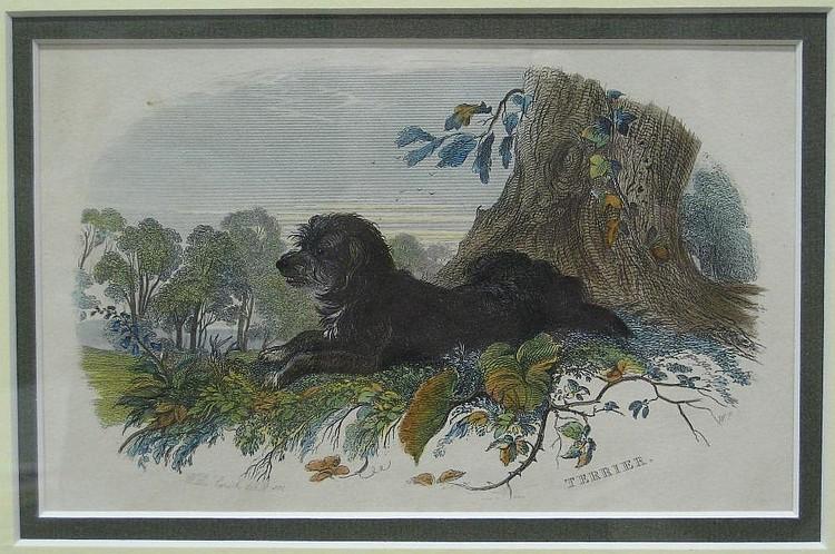 W.R. SMITH (British, 19th century)