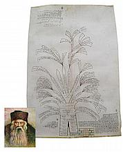 Handwritten Pedigree on Parchment—the Descendents of HaTaz and HaBe'er HaGola