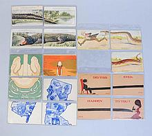 Lot of 5: Installment Postcard Sets.