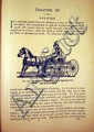MAGNER'S STANDARD HORSE AND STOCK BOOK 1903 Pictorial Encyclopedia Training Taming Abuses Diseases Remedies Plates