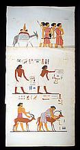 2Pcs Carlo Lasinio I MONUMENTI DELL'EGITTO E DELLA NUBIA c1838 Antique Hand-Colored Engraved Plates Ancient Egypt Egyptology Hieroglyphics Animals