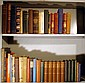 Antiquarian WORLD HISTORY Biography Pepys Columbus Chinese Gordon Philip II Russian Revolution T.E. Lawrence WWI Gothic France