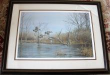 Richard Plasschaert's Moonan Marsh Series - Green Wing