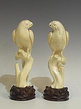 A pair of Chinese carved ivory parrots, perching