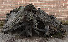 A large tree stump with root ball, 76cm high, 160cm wide max.