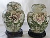PAIR OF ASIAN FLOWER PORCELAIN GENERAL JARS