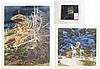 BEV DOOLITTLE, TWO OFFSET LITHOGRAPHS AND CD (Cali