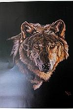 Grey Wolf by Pat Baker