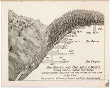 Oro Bella - prospectus for the Oro Bella Mining Company in Arizona
