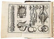 Exercitaciones anatomicas y esenciales operaciones de cirugia, con un breve resumen de los instrumentos y vendages. El modo de circular la sangre y un riñon extraordinario y algunos remedios; con las laminas finas y mas essenciales de la anatomia è