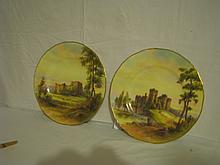 Hand Painted Royal Worcester plates