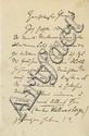 Brahms, Johannes. Autograph letter signed (