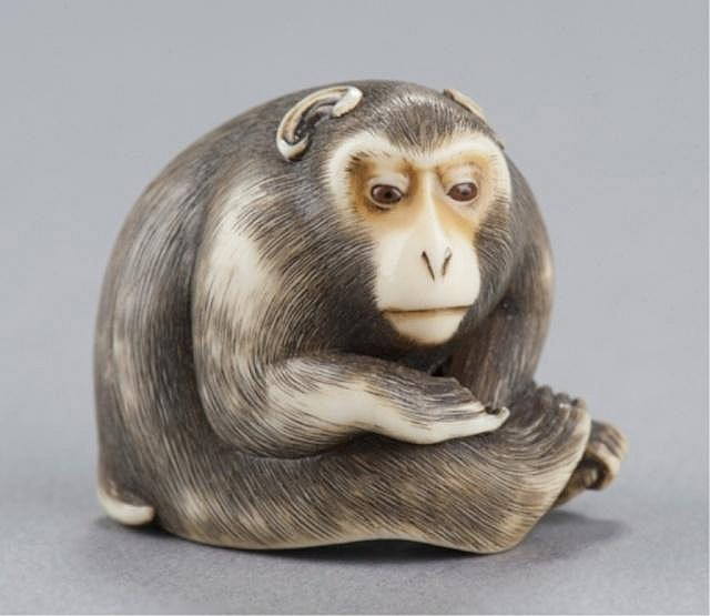 An ivory netsuke of a monkey.