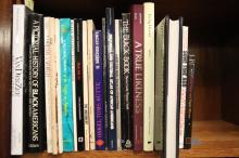 27 vols: Black Representation in Art