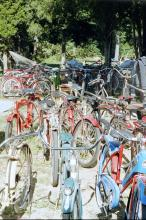 BICYCLE AUCTION
