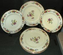 Collection 7 Hand painted Plates