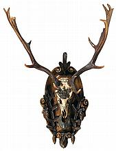 Fallow Deer Full Cap European Wall Mount From The Eulenburg Hunt Collection