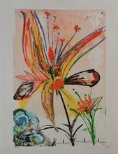 d'après Salvador DALI Fleur eau-forte en couleurs, en bas à droite : Dali, en bas à gauche : EA, 65 x 50 cm.