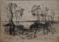 Arbres au bord de mer, Menton 1909 Fusain sur