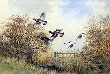 JOHN PALEY (20th/21st century) British Game Birds in Flight Watercolour Signed 43 x 30.5 cm, framed and glazed
