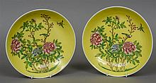 A pair of Chinese porcelain shallow dishes Each de