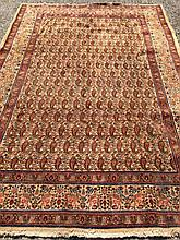 A Kashan wool carpet The ivory field extensively