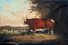 ENGLISH SCHOOL (19th century) Prize Bull in Lands