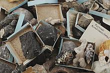 LARGE COLLECTION OF GEOLOGICAL AND ARCHAEOLOGICAL SAMPLES