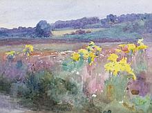 Mildred Anne Butler, 1858 - 1941