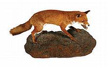 Stuffed fox mounted on a rocky mound