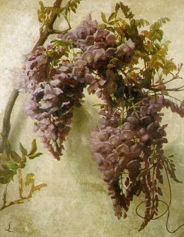 GEORGE COCHRAN LAMBDIN (AMERICAN, 1830-1896) WYSTERIA