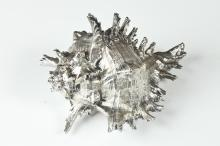 ITALIAN SILVER MOUNTED SHELL, 20th Century. Marked 800 fine. Indistinctly marked. - 7 3/4