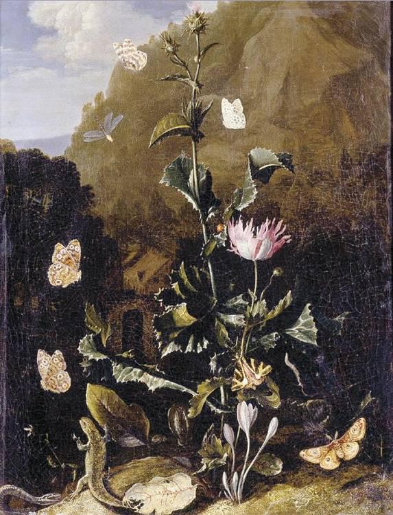 * OTTO MARSEUS VAN SCHRIECK NIJMEGEN 1619/20 (?) - 1678 AMSTERDAM