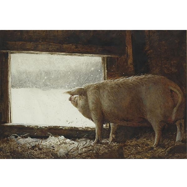 Jamie Wyeth B. 1946 , Winter Pig watercolor on paper
