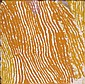 Makinti Napanangka circa 1930-2011 UNTITLED (2005) synthetic polymer paint on canvas