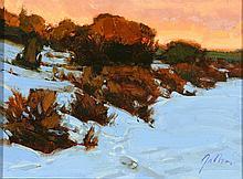 BILL GALLEN (BORN 1958) OIL ON BOARD