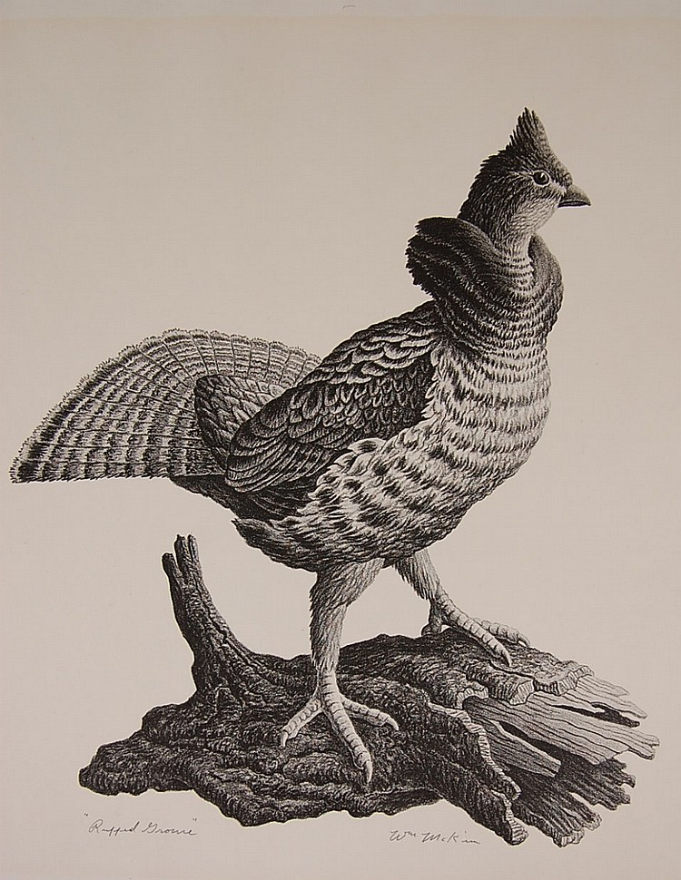 WILLIAM MCKIM (1916-1995) PENCIL SIGNED LITHOGRAPH 'RUFFED GROUSE'