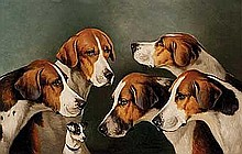 Wheeler, John Alfred - Hounds and a Terrier, Oil on board, 12 x 19