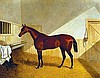 Herring Sr, Sir John Frederick - Bee's-wing (Mr. Wme. Orde's bay filly 'Bee's-wing' by Dr. Suntax out of a mare by Ardossan), Oil on canvas, 28 x 36
