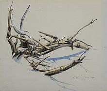 OLIN DOWS (1904-1981): BRANCHES IN SNOW