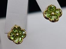 14 kt and Gemstone Earrings