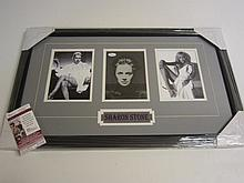 Sharon Stone Signed Display