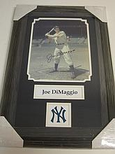 Joe Dimaggio Signed Display