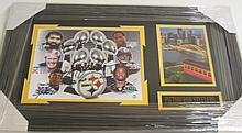 Pittsburgh Steelers signed Display