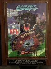 Carolina Panthers Inaugural Season 1995 Plaque 439/5000
