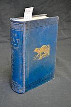 The Cat - First Edition Published 1881 - Very Scarce