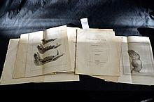 1790s Medical Tracts